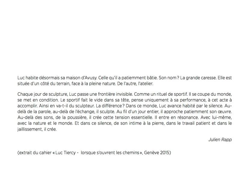 Expo_Luc Tiercy-4